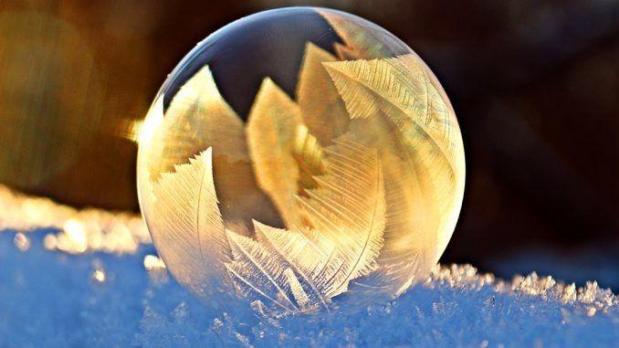 feiger-winter